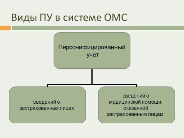 персонифицированный учет сведений о застрахованных лицах