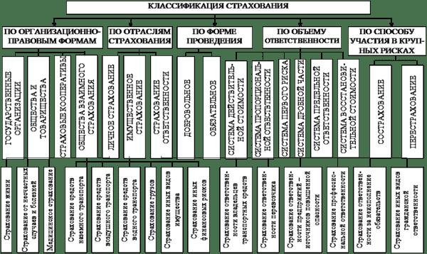 классификация отраслей страхования